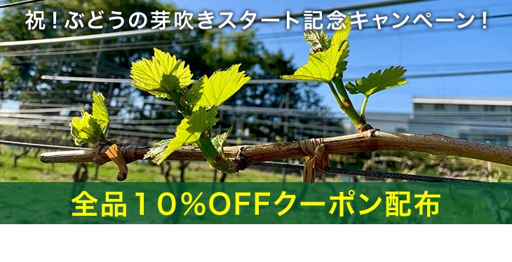 商品リニューアルキャンペーン・全品10%OFFクーポン配布