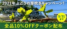 ぶどうの芽吹きキャンペーン2021