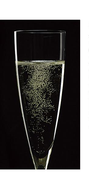 酵母の泡シリーズイメージ