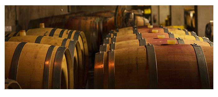 おすすめポイントイメージ:日本ワイン