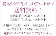 税込9900円以上お買い上げで送料無料